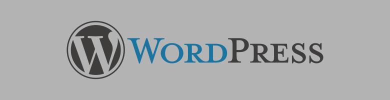 Meine Webseite arbeitet nun mit WordPress