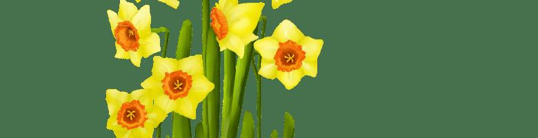Osterglocken: als Geschenk digital gemalt